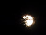 Color Photograph by Debbi Chan titled: cradled moon, created in 2012