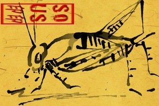 Debbi Chan Artwork cricket cricket, 2011 Digital Art, Fauna