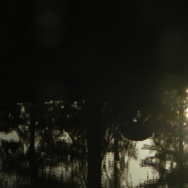 Debbi Chan Artwork deer reflection in my pond, 2011 Color Photograph, Beauty