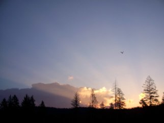 Color Photograph by Debbi Chan titled: early morning flight, 2010