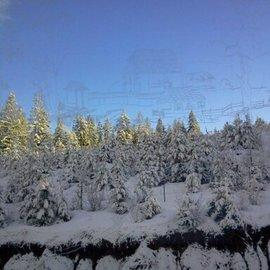 etched window shows winter landscape