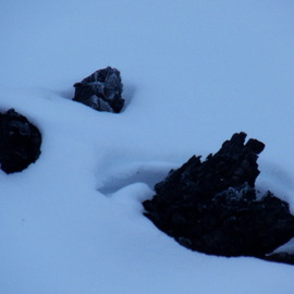 Debbi Chan: 'face in snow or not', 2012 Color Photograph, Beauty. Artist Description:    PHOTOS FROM IDAHO.                                                                                                                                                                                                                                                                                                                                                                                                                                                                                                            ...