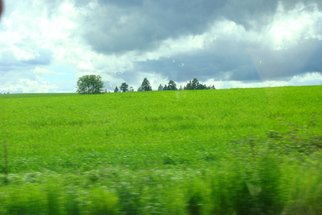 Color Photograph by Debbi Chan titled: field of green, 2010