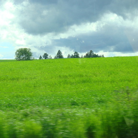 Debbi Chan: 'field of green', 2010 Color Photograph, Landscape. Artist Description:             photos from idaho.            ...