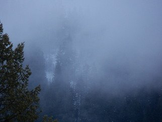 Artist: Debbi Chan - Title: fog - Medium: Color Photograph - Year: 2012