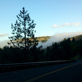 fog over the road to kendrick