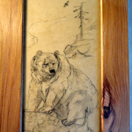 Debbi Chan Artwork grizzly bear, 2011 Other Drawing, Animals