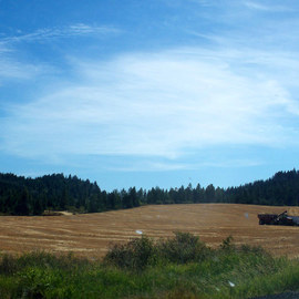 Debbi Chan: 'harvest time', 2010 Color Photograph, Landscape. Artist Description:  photos from idaho. ...