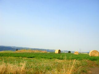 Color Photograph by Debbi Chan titled: hay field, 2010