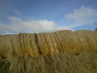 Debbi Chan: 'hey hay hey', 2012 Color Photograph, Landscape. Artist Description:       photos from Idaho.              ...