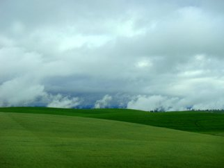 Color Photograph by Debbi Chan titled: idaho green, 2010