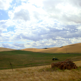 Debbi Chan: 'idle', 2010 Color Photograph, Landscape. Artist Description:         photos from Idaho.        ...