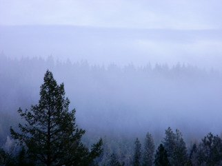 Artist: Debbi Chan - Title: inversion or fog - Medium: Color Photograph - Year: 2011