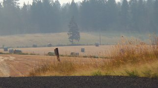 Debbi Chan Artwork late summer fields one, 2014 Color Photograph, Farm