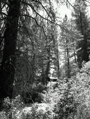 Debbi Chan: 'little house in the woods', 2011 Black and White Photograph, Beauty. Artist Description:              photos from idaho                  ...