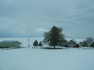 Artist: Debbi Chan - Title: looks like Christmas in the country - Medium: Color Photograph - Year: 2011