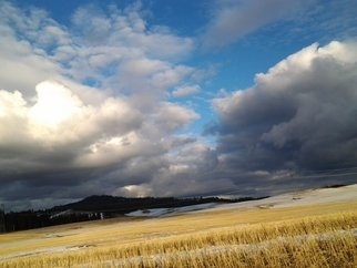 Artist: Debbi Chan - Title: low over the fields - Medium: Color Photograph - Year: 2012