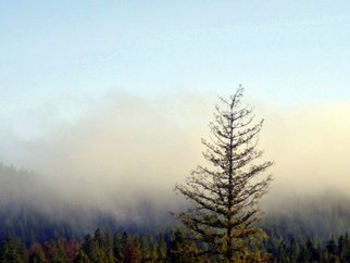 Color Photograph by Debbi Chan titled: morning fog in mountains, 2010