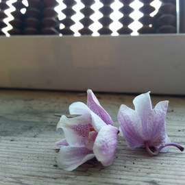 Debbi Chan Artwork of abacus and orchids, 2013 Color Photograph, Still Life