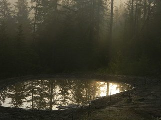 Debbi Chan: 'one little pond', 2011 Color Photograph, Beauty. Artist Description:    photos from idaho.   ...