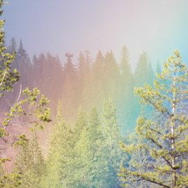 Debbi Chan: 'one more rainbow', 2012 Color Photograph, Beauty. Artist Description:     photos from Idaho.    ...