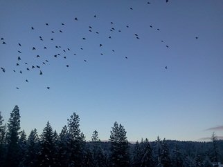Debbi Chan: 'passing over', 2012 Color Photograph, Birds. Artist Description:        photos from Idaho.               ...