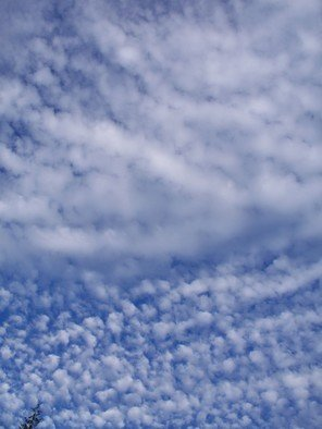 Color Photograph by Debbi Chan titled: patterns in the sky, 2010