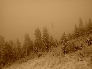 Debbi Chan Artwork peace in sepia, 2012 Other Photography, Landscape