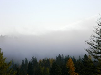 Artist: Debbi Chan - Title: peeking out from inside fog - Medium: Color Photograph - Year: 2010