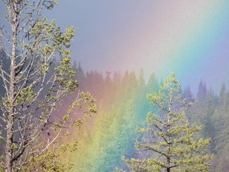 Debbi Chan Artwork rainbow  colors trees, 2012 Color Photograph, Atmosphere