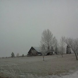 Debbi Chan Artwork snow on the hill, 2011 Color Photograph, Farm