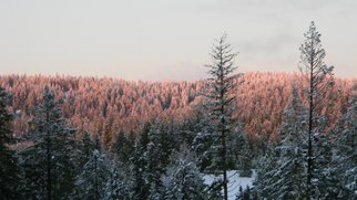 Debbi Chan: 'sun lights snow laden mountain top', 2010 Color Photograph, Beauty. Artist Description:                   photos from idaho.                  ...