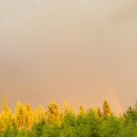 Debbi Chan Artwork sun rain and rainbow for all to see, 2011 Color Photograph, Landscape
