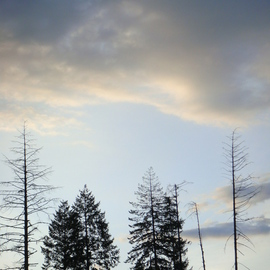 Debbi Chan: 'the  morning sky', 2010 Color Photograph, Landscape. Artist Description:   photos from idaho    ...