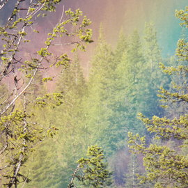 Debbi Chan: 'the end of a rainbow', 2012 Color Photograph, Beauty. Artist Description:   photos from Idaho.  ...