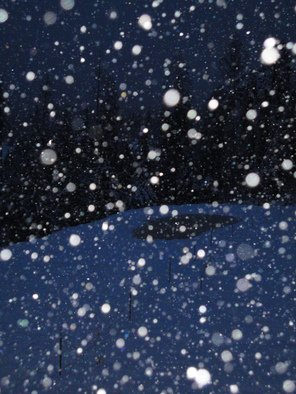 Debbi Chan Artwork the snowstorm moves in, 2010 Color Photograph, Atmosphere