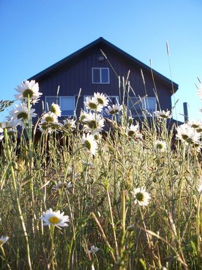 Color Photograph by Debbi Chan titled: through the flowers is my home, 2010