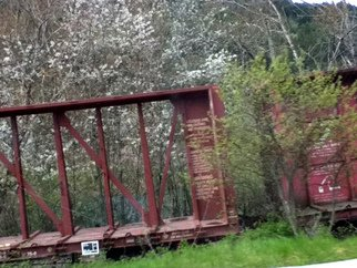Debbi Chan Artwork trains show signs of spring, 2011 Color Photograph, Trains