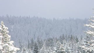 Debbi Chan: 'white and grey', 2010 Color Photograph, Landscape. Artist Description:         photos from Idaho.        ...
