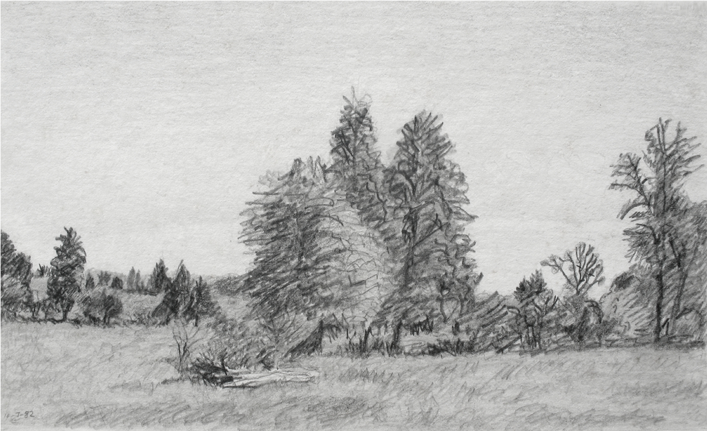 Keith thrash landscape with hollow log 1982 pencil drawing landscape