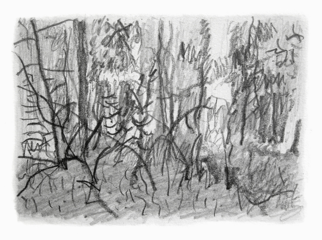 Keith Thrash  'Woods', created in 1998, Original Drawing Other.