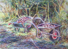 - artwork Spuds_in_Barrows-1202984637.jpg - 2007, Drawing Pencil, Other