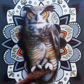 Stephen Bibb: 'owl mandala 2', 2019 Acrylic Painting, Mandala. Artist Description: The fascinating, mysterious bird- of- prey within the patterns of the mandala...