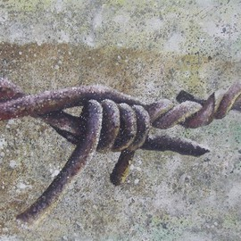Steve Coughlin: 'barbed wire', 2010 Acrylic Painting, Still Life. Artist Description:  close up image of barbed wire painted on heavily textured box canvas  ...