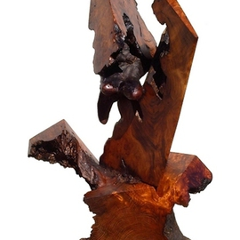Daryl Stokes Artwork The Protester, 2010 Wood Sculpture, Abstract