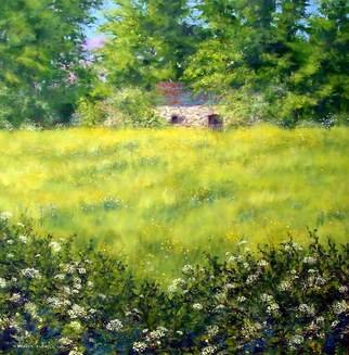 Landscape Acrylic Painting by Stuart Parnell Title: Barn and Buttercups, created in 2007