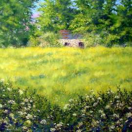 Stuart Parnell Artwork Barn and Buttercups, 2007 Acrylic Painting, Landscape