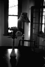 - artwork Flowers-1028793226.jpg - 2002, Photography Black and White, Still Life