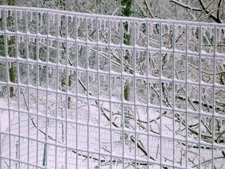 Donna Lamothe Artwork Fenced In Ice, 2009 Other Photography, Nature
