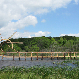 Tanya Preminger: 'Back Flip Bridge', 2009 Wood Sculpture, Landscape.